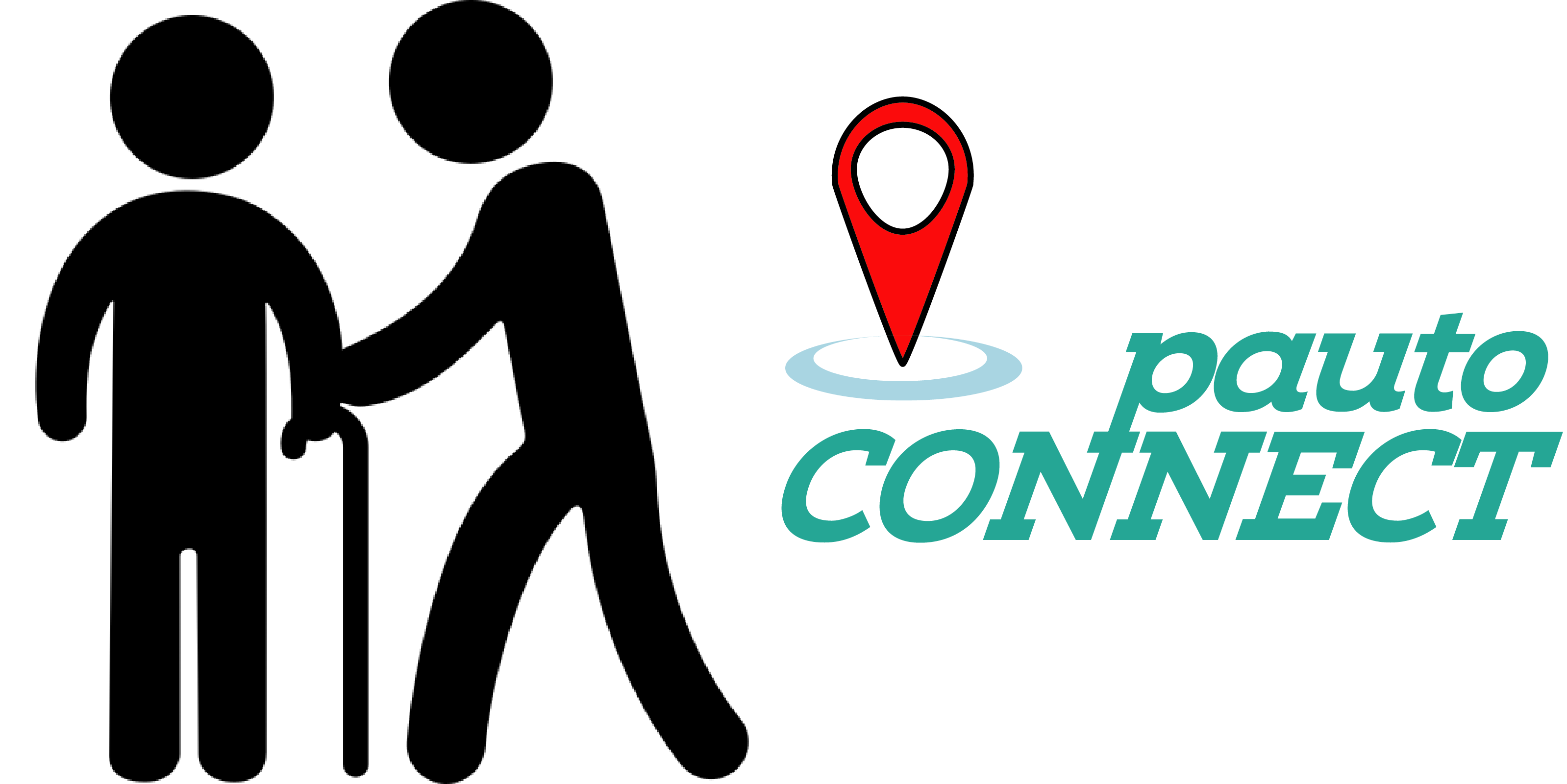 Logo Pauto Connect